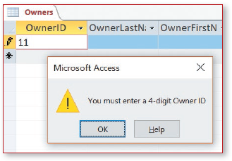 """Datasheet view of Owners table. Message box contains """"You must enter a 4-digit Owner ID"""" and clickable OK and Help buttons."""