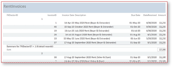 Report view of report excerpt displays header and grouped records with summary line total.